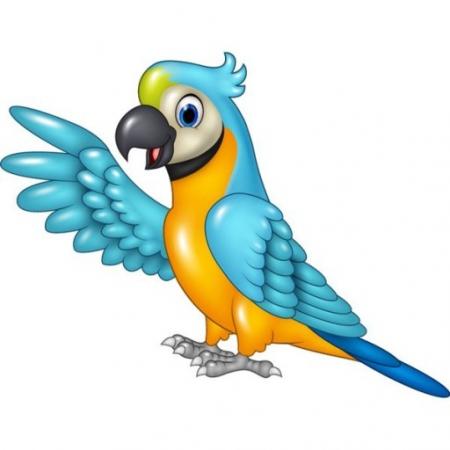 Gadający ptak - papuga