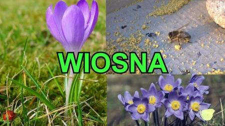 Oznaki wiosny w oczach dzieci z grupy Żabki